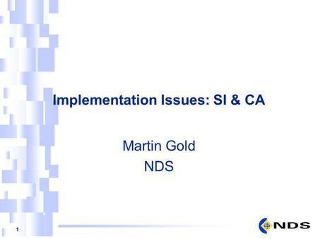1 Implementation Issues: SI & CA Martin Gold NDS.