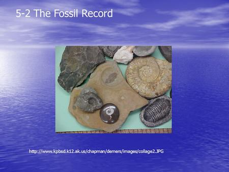 5-2 The Fossil Record http://www.kpbsd.k12.ak.us/chapman/demers/images/collage2.JPG.