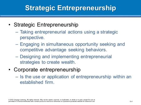 Strategic Entrepreneurship –Taking entrepreneurial actions using a strategic perspective. –Engaging in simultaneous opportunity seeking and competitive.