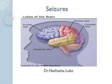 Seizures Dr.Nathasha Luke. Overview Definition Classification Clinical Features Differential Diagnosis Treatment Cases.