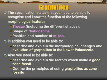Graptolites  The specification states that you need to be able to recognise and know the function of the following morphological features: Thecae (including.