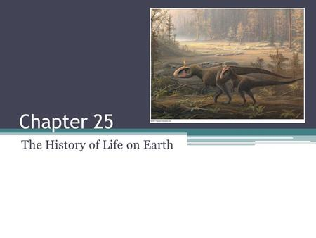 Chapter 25 The History of Life on Earth. What you need to know: The age of the Earth and when prokaryotic and eukaryotic life emerged. Characteristics.