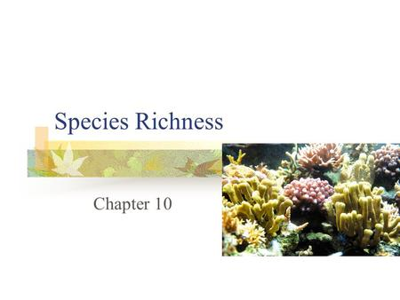 Species Richness Chapter 10. Species Richness The number of species in a community Some species are common, others are rare Easy to count common species,