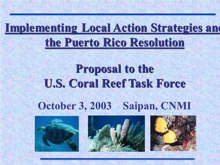 Implementing Local Action Strategies and the Puerto Rico Resolution Proposal to the U.S. Coral Reef Task Force October 3, 2003 Saipan, CNMI.