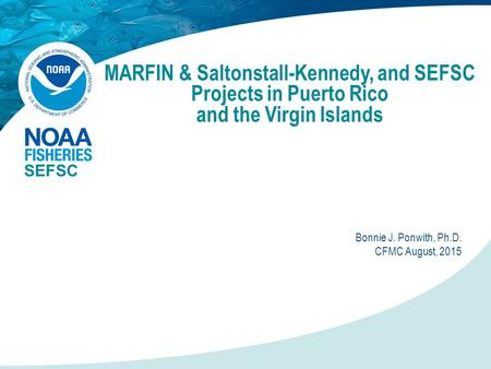 MARFIN & Saltonstall-Kennedy, and SEFSC Projects in Puerto Rico and the Virgin Islands SEFSC Bonnie J. Ponwith, Ph.D. CFMC August, 2015.