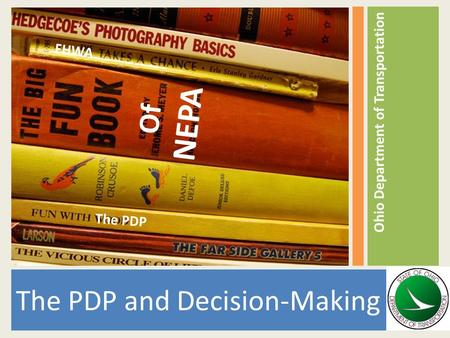 The PDP and Decision-Making