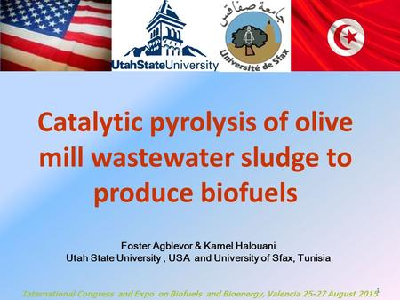 1 Catalytic pyrolysis of olive mill wastewater sludge to produce biofuels Foster Agblevor & Kamel Halouani Utah State University, USA and University of.