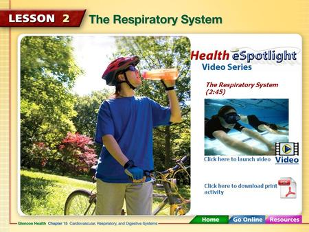 The Respiratory System (2:45) Click here to launch video Click here to download print activity.
