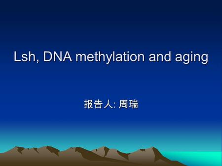 Lsh, DNA methylation and aging 报告人 : 周瑞. Normal DNA methylation In mammals, DNA methylation patterns: an initial wave of global demethylation; the rapid.