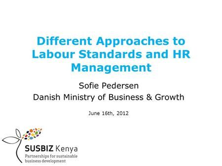 Different Approaches to Labour Standards and HR Management Sofie Pedersen Danish Ministry of Business & Growth June 16th, 2012.