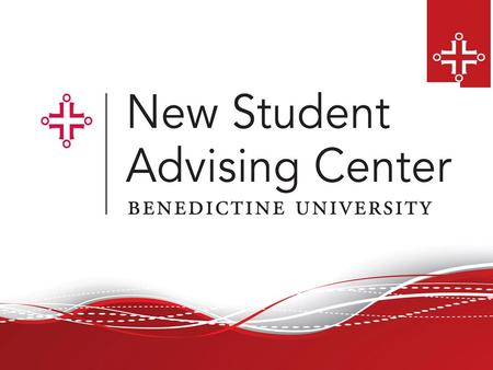 Members of the NSAC Placement Testing Specialist Transfer Credit Evaluation Team AP credits Dual credits Academic Advisors First year of study at Benedictine.