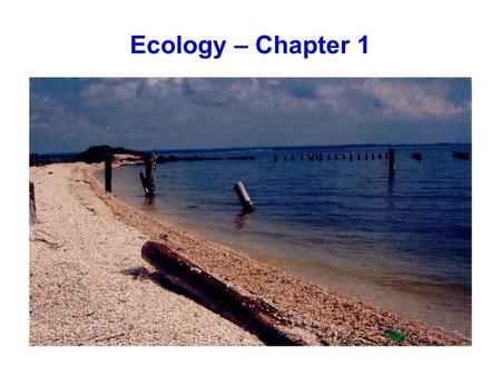 Ecology – Chapter 1. Ecology Defined: total relations of the animal to both its organic and its inorganic environment (Haeckal 1869) scientific natural.