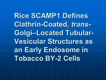 Rice SCAMP1 Defines Clathrin-Coated, trans- Golgi–Located Tubular- Vesicular Structures as an Early Endosome in Tobacco BY-2 Cells.