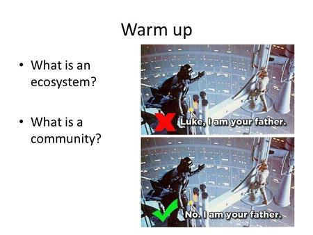 Warm up What is an ecosystem? What is a community?