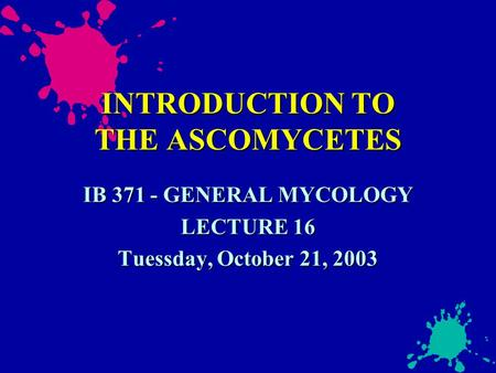 INTRODUCTION TO THE ASCOMYCETES IB 371 - GENERAL MYCOLOGY LECTURE 16 Tuessday, October 21, 2003.