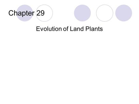 Chapter 29 Evolution of Land Plants. Overview Plants can be described as multicellular, eukaryotic, photosynthetic autotrophs Four main groups:  Bryophytes.