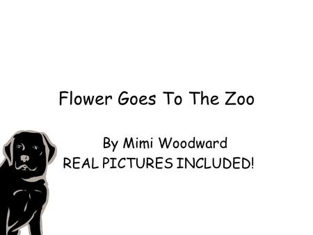 Flower Goes To The Zoo By Mimi Woodward REAL PICTURES INCLUDED!