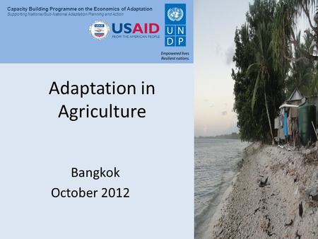 Presentation Title Capacity Building Programme on the Economics of Adaptation Supporting National/Sub-National Adaptation Planning and Action Adaptation.