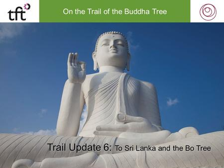 On the Trail of the Buddha Tree Trail Update 6: To Sri Lanka and the Bo Tree.