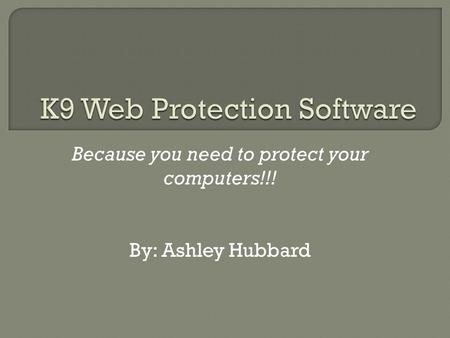 Because you need to protect your computers!!! By: Ashley Hubbard.
