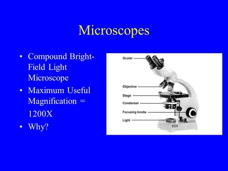Microscopes Compound Bright-Field Light Microscope