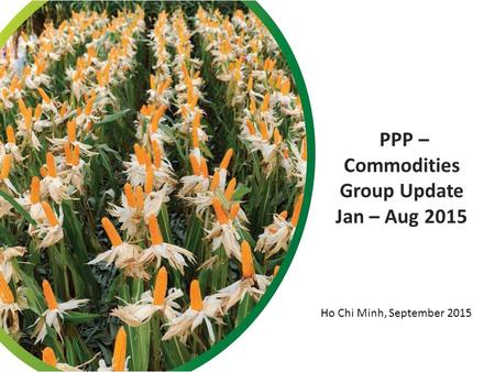 PPP – Commodities Group Update Jan – Aug 2015 Ho Chi Minh, September 2015.