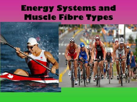 Energy Systems and Muscle Fibre Types. Three Key Energy Nutrients The food that we eat is broken down into three nutrients during digestion: Protein Fats.