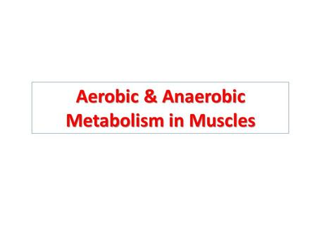 Aerobic & Anaerobic Metabolism in Muscles. Objectives Recognize the importance of ATP as energy source in skeletal muscle. Understand how skeletal muscles.