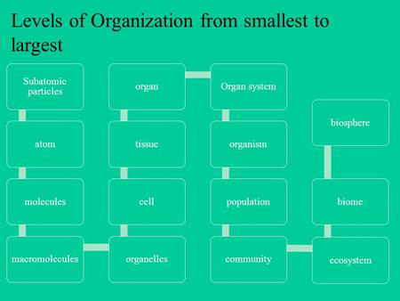 Levels of Organization from smallest to largest Subatomic particles atommoleculesmacromoleculesorganellescelltissueorganOrgan systemorganismpopulationcommunityecosystembiomebiosphere.