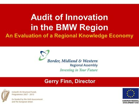Audit of Innovation in the BMW Region An Evaluation of a Regional Knowledge Economy Gerry Finn, Director.
