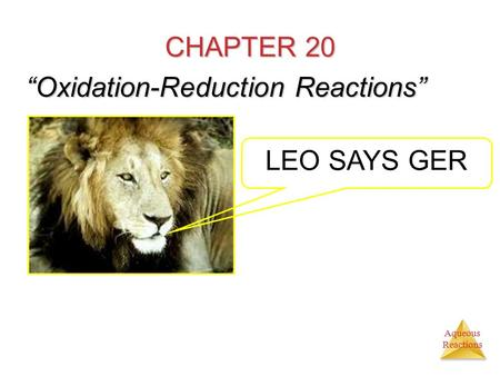 "Aqueous Reactions CHAPTER 20 ""Oxidation-Reduction Reactions"" LEO SAYS GER."