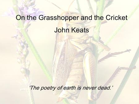 On the Grasshopper and the Cricket John Keats 'The poetry of earth is never dead.'