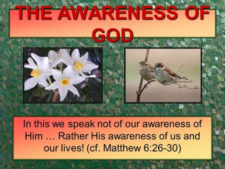 THE AWARENESS OF GOD In this we speak not of our awareness of Him … Rather His awareness of us and our lives! (cf. Matthew 6:26-30)