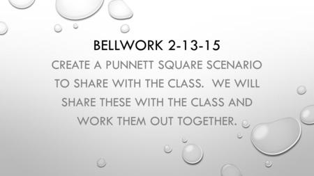 BELLWORK 2-13-15 CREATE A PUNNETT SQUARE SCENARIO TO SHARE WITH THE CLASS. WE WILL SHARE THESE WITH THE CLASS AND WORK THEM OUT TOGETHER.