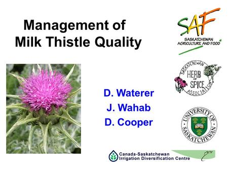 Management of Milk Thistle Quality D. Waterer J. Wahab D. Cooper.