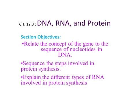 Relate the concept of the gene to the sequence of nucleotides in DNA.