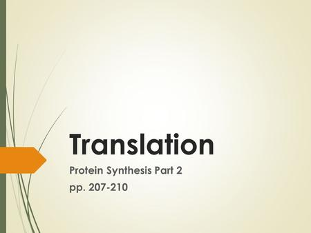 Translation Protein Synthesis Part 2 pp. 207-210.