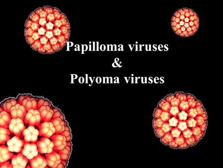 Papilloma viruses & Polyoma viruses. Human Papilloma viruses (HPV) DNA virus, double strand, circular, Icosahedral nucleocapsid, small size (45-55nm).