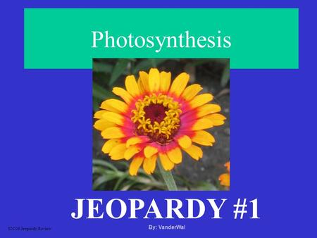 Photosynthesis JEOPARDY #1 S2C06 Jeopardy Review By: VanderWal.