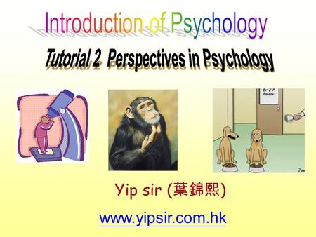 Www.yipsir.com.hk Yip sir ( 葉錦熙 ). 1. What is the modern definition of psychology? Psychology is the scientific study of behavior and mental processes,