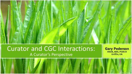 Curator and CGC Interactions: A Curator's Perspective Gary Pederson USDA, ARS, PGRCU Griffin, GA.