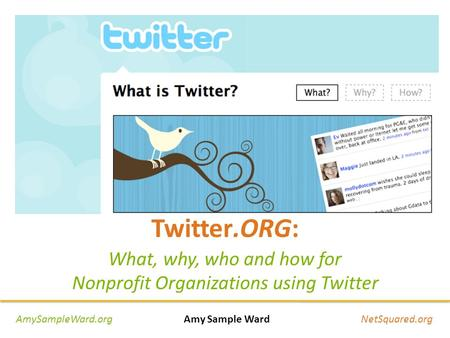 Twitter.ORG: What, why, who and how for Nonprofit Organizations using Twitter AmySampleWard.org Amy Sample Ward NetSquared.org.