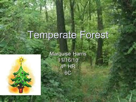 Temperate Forest Marquise Harris 11/16/10 4 th HR 6C.
