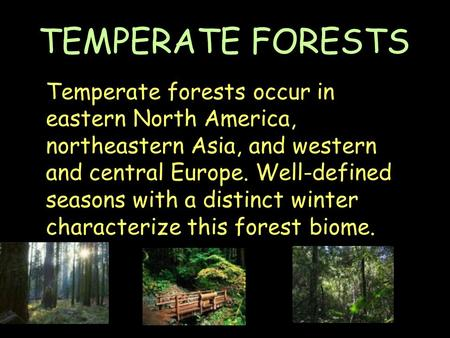 Temperate forests occur in eastern North America, northeastern Asia, and western and central Europe. Well-defined seasons with a distinct winter characterize.