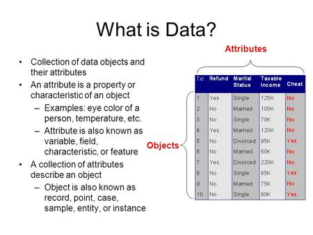 What is Data? Attributes