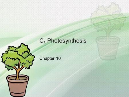 C 3 Photosynthesis Chapter 10. What you need to know! How photosystems convert solar energy to chemical energy. How linear electron flow in the light.