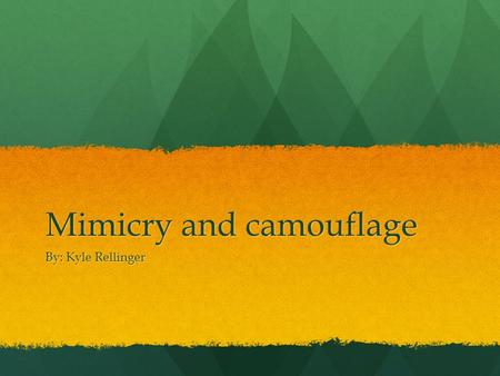 Mimicry and camouflage By: Kyle Rellinger. video