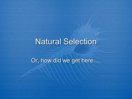 Natural Selection Or, how did we get here….. Key concepts: Communicate scientific understandings using descriptions, explanations, and models Explain.
