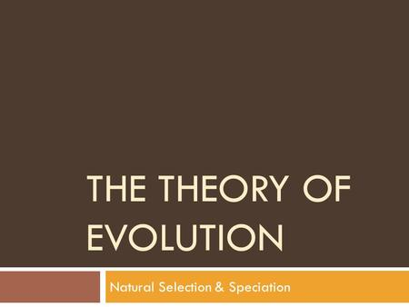 THE THEORY OF EVOLUTION Natural Selection & Speciation.