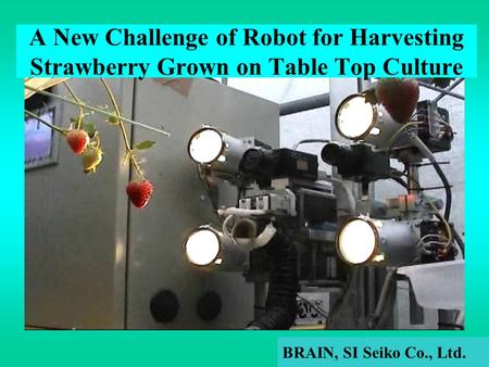 A New Challenge of Robot for Harvesting Strawberry Grown on Table Top Culture BRAIN, SI Seiko Co., Ltd.